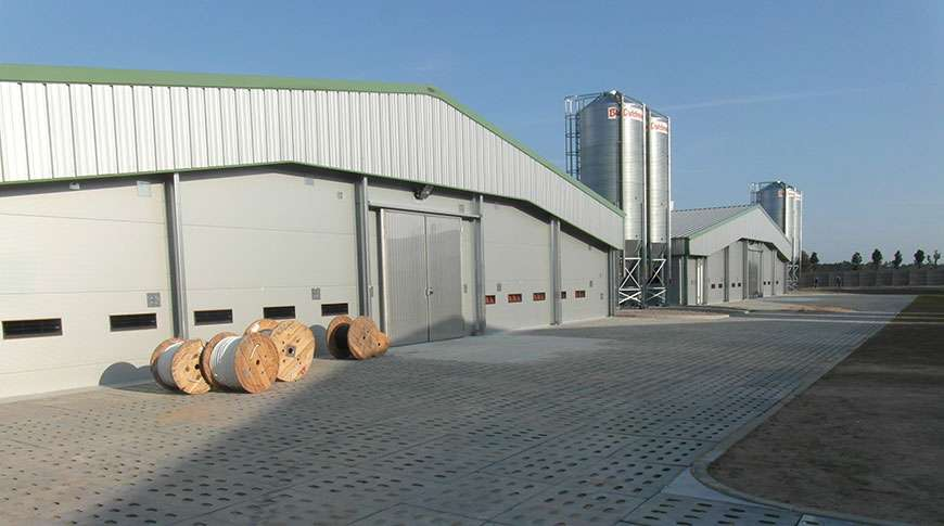 Pavilhão Industrial Metálico Exploração de Suínos Frisomat