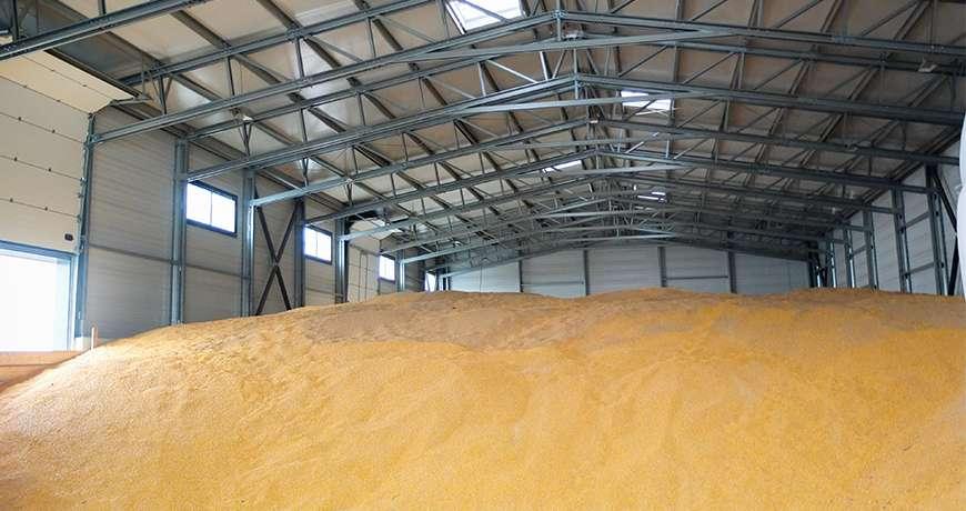 Pavilhão Metálico Agrícola Armazenagem a Granel Interior Frisomat