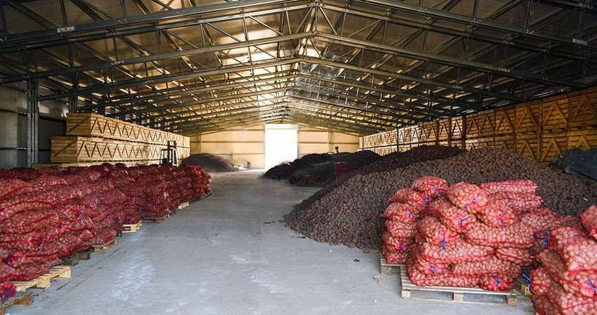 Pavilhão Metálico Armazenamento de Batatas Interior Frisomat