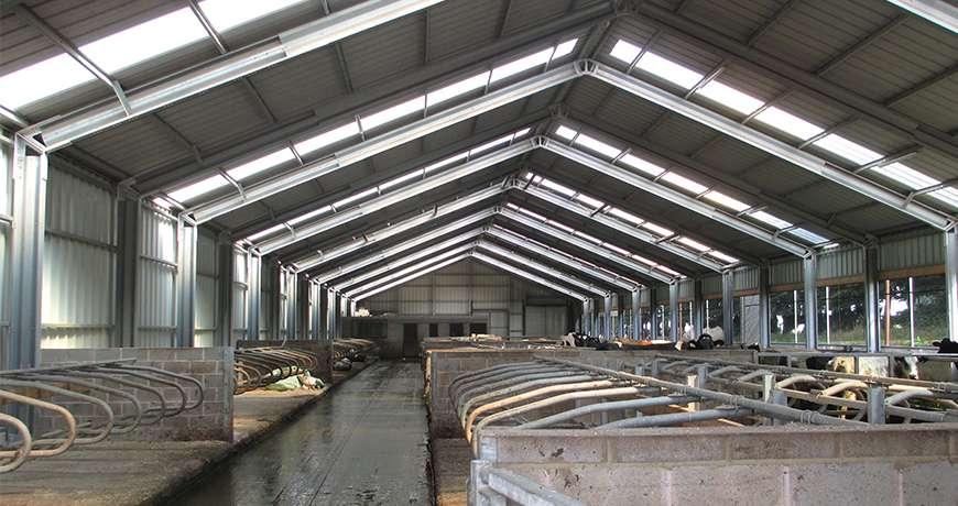 Pavilhão Metálico Agrícola Exploração Pecuária Vazio Interior Frisomat