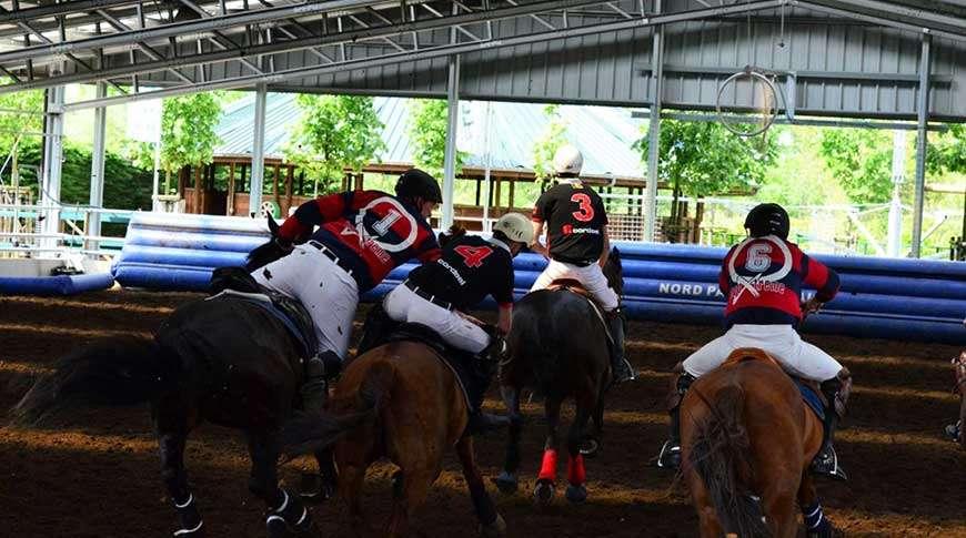 Pavilhão em Aço Picadeiro Equitação Equitação Frisomat
