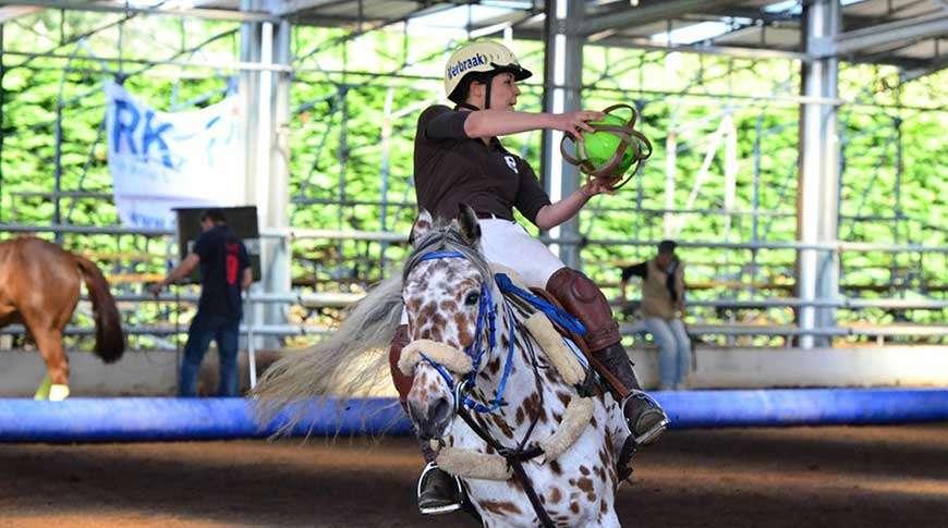 Picadeiro Metálico em Aço Escola de Equitação Frisomat