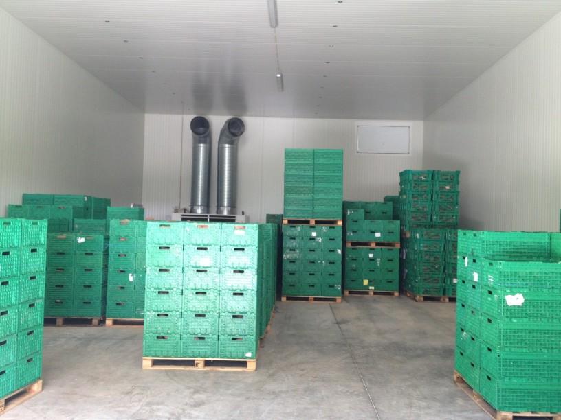 soluções de armazenamento de vegetais