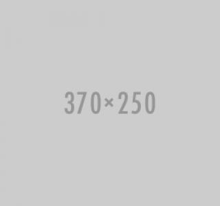 307x250